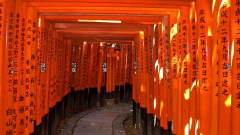 kanjipreview.jpg