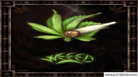 weed-dezy22.jpg