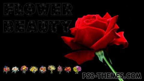 643-flowerbeauty-revolt914.jpg