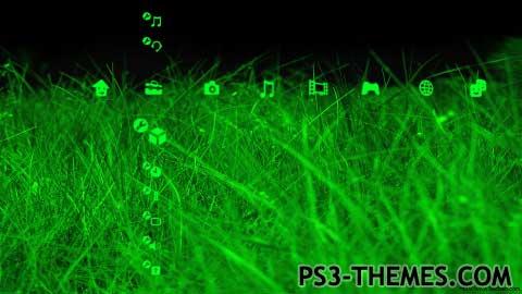 1318-green.jpg