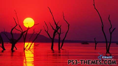 1405-natureextreme.jpg
