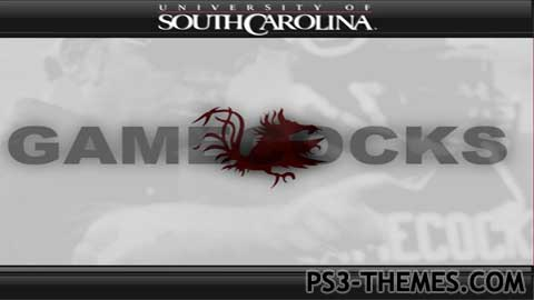 1745-southcarolinagamecocks.jpg