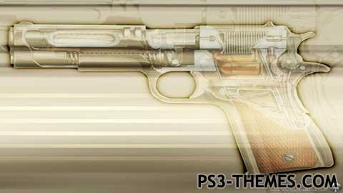 4024-guns.jpg