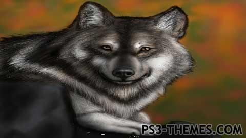 7059-Wolf