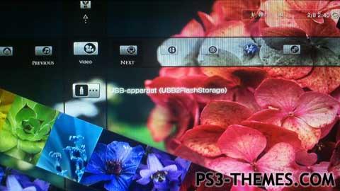 Ps3 Flower Dynamic Theme - Flowers Healthy