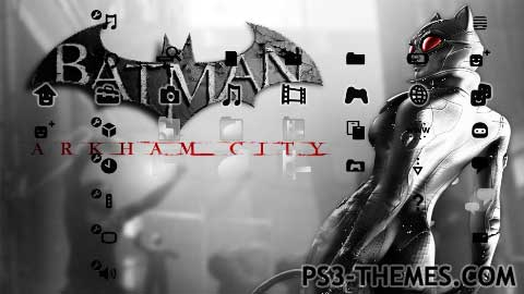 ps3 themes catwoman 2