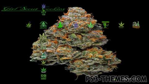 24611-Weed_-_Herbal_Dreams_Pt._2