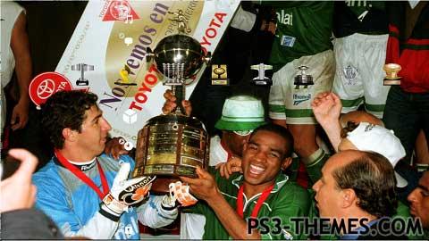 25013-Palmeiras
